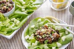 Обручи салата с омаром, анакардиями и луком Стоковая Фотография RF