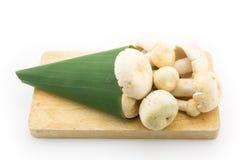 Обруч гриба с листьями банана на разделочной доске Стоковая Фотография RF