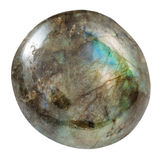 Обрушенная изолированная драгоценная камень лабрадорита Стоковая Фотография