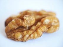Обстреливаемое семя грецкого ореха Стоковая Фотография RF