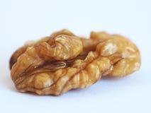 Обстреливаемое семя грецкого ореха Стоковое Изображение