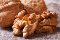 Обстреливаемые грецкие орехи и грецкий орех в макросе раковины Стоковые Фотографии RF