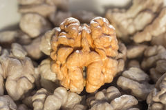 обстреливаемые грецкие орехи Стоковое фото RF