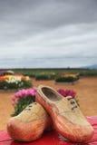 обувает тюльпаны деревянные Стоковые Фотографии RF