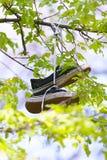 Обувь Стоковые Изображения