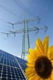 обшивает панелями проводы общего назначения солнцецвета полюса солнечные Стоковое фото RF