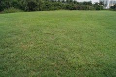 обширная лужайка Стоковая Фотография RF