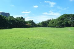 Обширное поле парка Wachirabenchathat стоковое фото