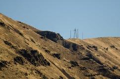 Общего назначения поляки стоя высокий над сердцем каньона адов Стоковое Изображение