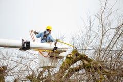 Общего назначения утеска дерева работника стоковые фотографии rf