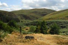 общее северное wooler northumberland Стоковое фото RF