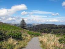 Общее Caerphilly, южный уэльс Стоковая Фотография RF