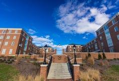Общежития магнолии и кизила на WFU Стоковое Фото