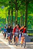 Общественный велосипед Стоковые Фото