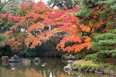 Общественный парк когда осень приходит в Киото, Японию Стоковое Фото