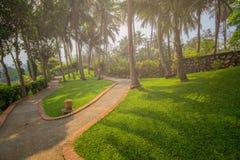 Общественный парк на prabang luang в Лаосе Стоковая Фотография RF