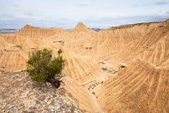 Общий взгляд Bardenas Reales, Navarra, Испании Стоковое Изображение RF