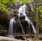 общий водопад бега стоковое фото rf