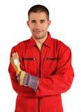 общий красный цвет колеривщика Стоковые Фотографии RF