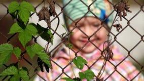 Общий хмель entwined в старой ржавой загородке сделанной стальной ячеистой сети В defocused предпосылке, ребенок милый усмехаться сток-видео