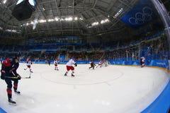 Объединяйтесь в команду Канада в действии против чехии команды во время игры хоккея на льде ` s людей предварительной круглой на  Стоковые Фото