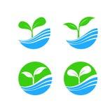 Объезжайте элемент логотипа формы с концепцией завода и воды природы, h Стоковая Фотография