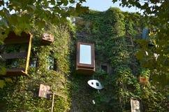 Объекты вися на стене дома Стоковые Фото