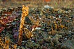 Объекты на пляже Стоковая Фотография RF