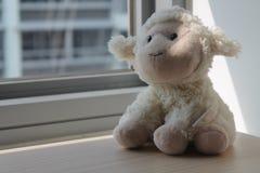 Объягнитесь игрушка сидя окном в тенях Стоковые Изображения RF