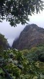 Облака горы проползать Стоковое Фото