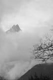 Облака, дерево и гора Стоковые Изображения