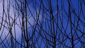 Облака летания Стоковые Изображения RF