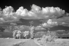 Облака лета над полями Стоковые Изображения RF