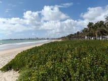 Облака и взгляд взморья от песчаного пляжа pessoa joao Стоковая Фотография RF
