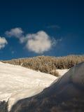 Облака над лесом зимы стоковая фотография