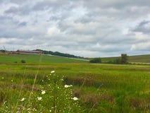 Облака над зелеными выгонами Стоковые Фотографии RF
