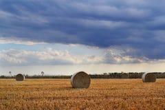 Облака на поле лета сена Стоковые Изображения RF