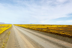 Облака дороги Karoo Tankwa Стоковое Фото