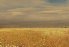 облака покрыли степь неба ландшафта холма сухой травы Стоковое Изображение RF