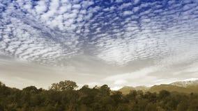 Облака промежутка времени над лесом осени сток-видео