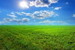 Облака солнца травы Стоковое Фото