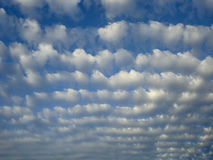 Облака Altocumulus Стоковое Изображение