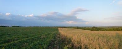 облака field сверх Стоковое Изображение