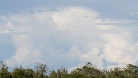 Облака, j n & x27; & x27; Ding& x27; & x27; Охраняемая природная территория милочки национальная, Sanibel стоковая фотография