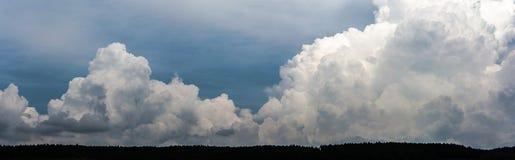 Облака Panoramatic над лесом Стоковые Фотографии RF