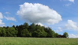 Облако над лесом стоковые изображения rf