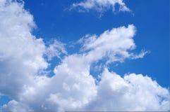 Облако дракона Стоковые Изображения RF