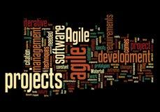 Облако слова с поворотливой концепцией проекта стоковые изображения