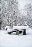 Область уверенного радиоприема Snowy Стоковые Фото