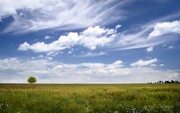 Облачное небо над просторным полем Ландшафт Стоковые Фотографии RF